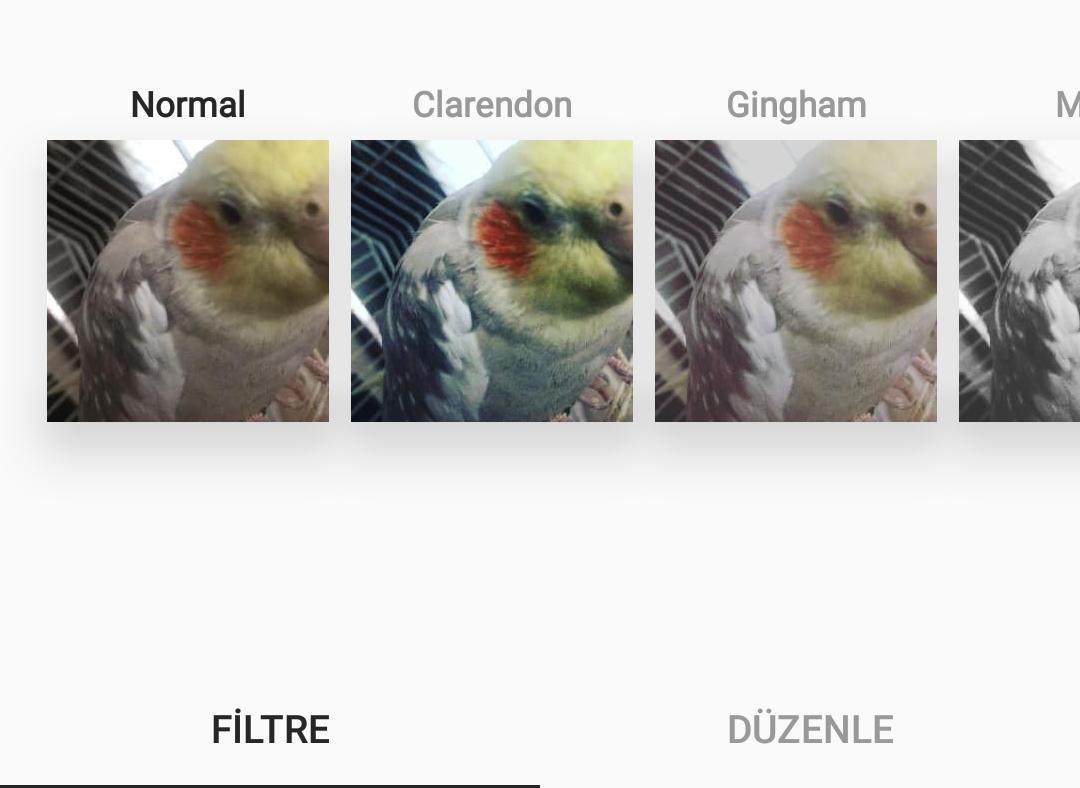 Instagram filtre nasıl eklenir